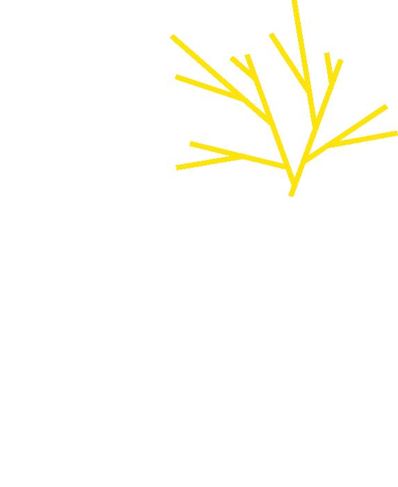 SÉQUOIA - Les ateliers